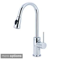 Pioneer Motegi Single-handle Kitchen Pull-down Faucet