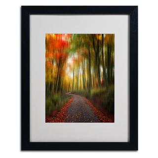 Philippe Sainte-Laudy 'The Lost Path' Framed Matted Art