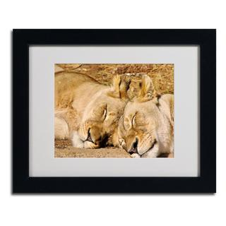 CATeyes 'National Zoo Lions' Framed Matted Giclee Art