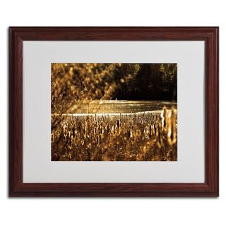 CATeyes 'Boston 6' Framed Matted Art