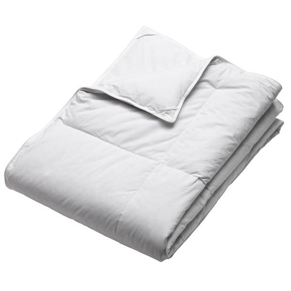 Dorm Ready Twin XL Down Blanket