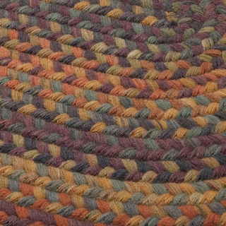 Forester Braided Area Rug (6' x 9')