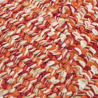 'Ocean's Edge' Multicolored Flat Braided Rug (3' x 5')
