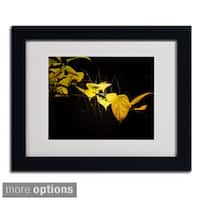 Philippe Sainte-Laudy 'Golding' Framed Matted Art