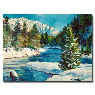 David Lloyd Glover 'Colorado Pines' Canvas Art