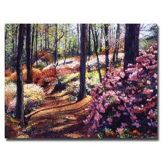 David Lloyd Glover 'Azalea Forest' Canvas Art