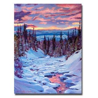 David Lloyd Glover 'Winter Solstice' Canvas Art