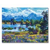 David Lloyd Glover 'Wildflower Valley' Canvas Art - Multi
