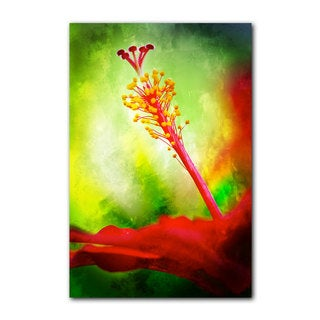 Ready2HangArt 'Tropical Hibiscus' Gallery-wrapped Canvas Wall Art