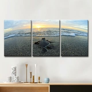'Turtle' 3-Piece Wrapped Canvas Wildlife Wall Art Set