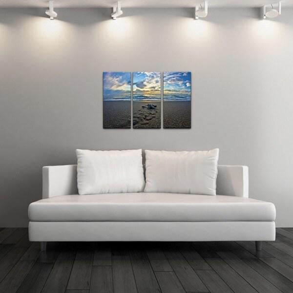 Chris Doherty 'Turtle' Acrylic Art 3-piece Set