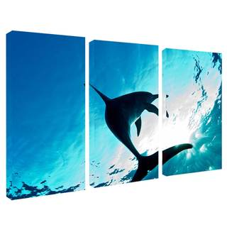 Chris Doherty 'Dolphin' Canvas Art 3-piece Set