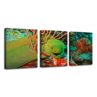 Link to Chris Doherty 'Eel' Canvas Art 3-piece Set Similar Items in Vinyl Wall Art