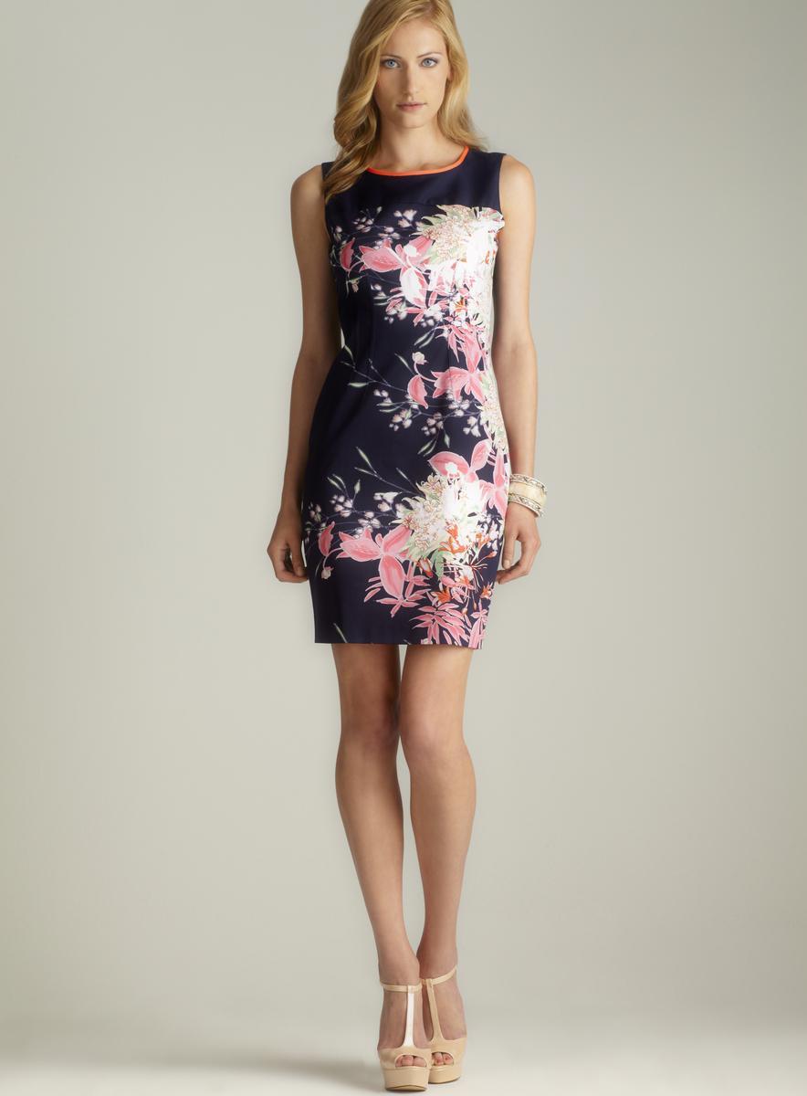 Tahari Sleeveless Floral Sheath Dress