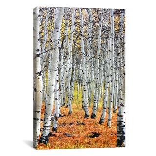 iCanvas Autumn In Aspen' Canvas Print Wall Art