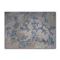 Chris Doherty 'Turtle Hatchlings' Canvas Wall Art