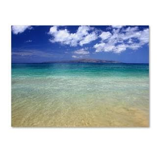 Pierre Leclerc 'Hawaii Blue Beach' Canvas Art