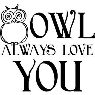 'Owl Always Love You' Vinyl Wall Art Lettering