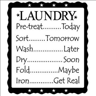'Laundry (list) Pre-treat..Today, Sort..Tomorrow, Wash..Later, Dry..Soon, Fold..Maybe, Iron..Get Real' Vinyl Wall Art Lettering