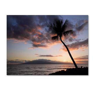 Pierre Leclerc 'Palm Tree Maui' Canvas Art