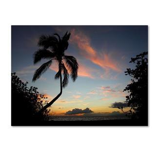 Pierre Leclerc 'Tropical Sunset' Canvas Art