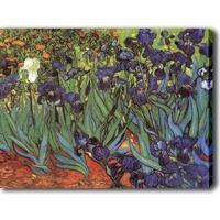 Vincent van Gogh 'Irises Saint-Remy' Canvas Art