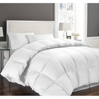 Hotel Grand Oversized Luxury 1000 Thread Count Egyptian Cotton Down Alternative Comforter (More options available)