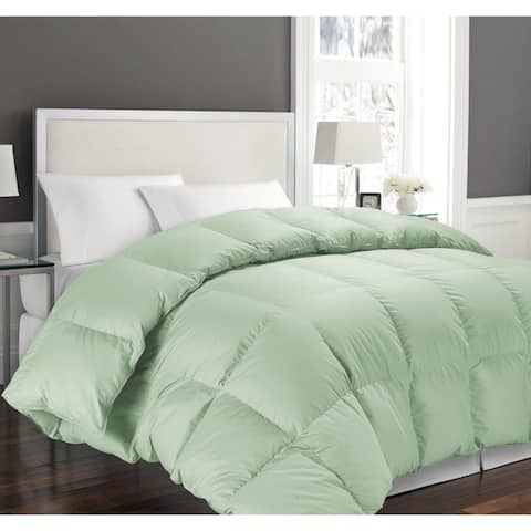 Hotel Grand Oversized Luxury 1000 Thread Count Pima Cotton Down Alternative Comforter