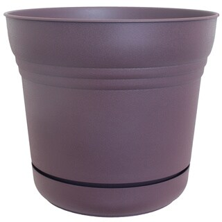 Bloem Exotica Saturn Planters (Pack of 12)