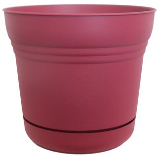 Bloem Union Red Saturn Planters (Pack of 12)