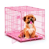 MidWest iCrate Wire Pet Dog Crate