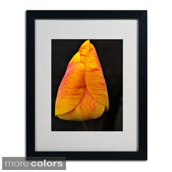 Kurt Shaffer 'Perfect Red and Yellow Tulip' Framed Matted Art
