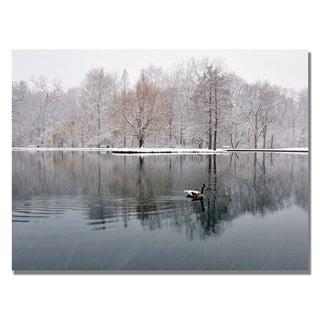 Kurt Shaffer 'Winter Goose' Canvas Art