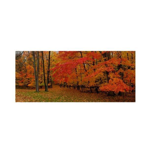 Kurt Shaffer 'Ohio Autumn' Canvas Art