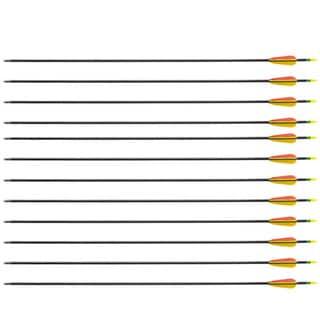 Wizard Archery 26-Inch Archery Bow Fiberglass Arrows (1 Dozen)