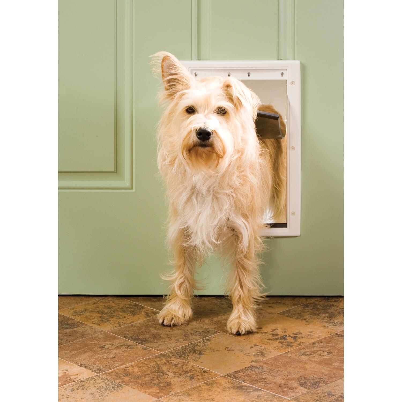 Petsafe Plastic Pet Door (Large - 10 1/8in x 16 1/4in), W...