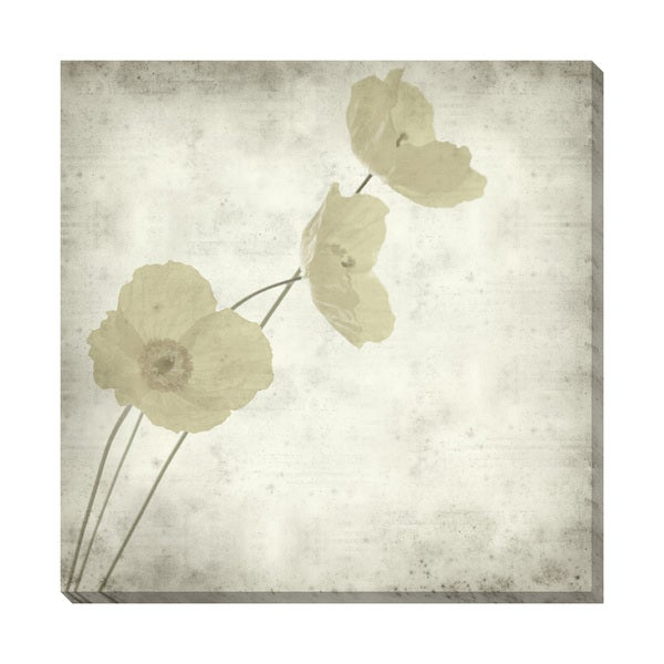 Gallery Direct Welsh Poppy II Oversized Gallery Wrapped Canvas