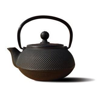 Cast Iron 'Sapporo' 20-ounce Teapot