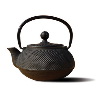 cast iron 20ounce teapot