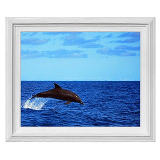 Chris Doherty Framed 'Dolphin' Wall Art
