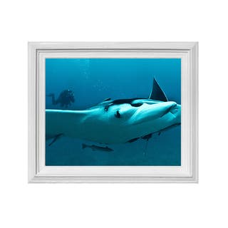 Chris Doherty 'Ray' Framed Wall Art