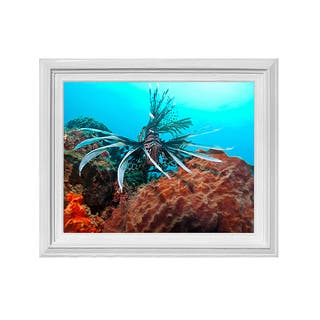 Chris Doherty Framed 'Underwater' Wall Art