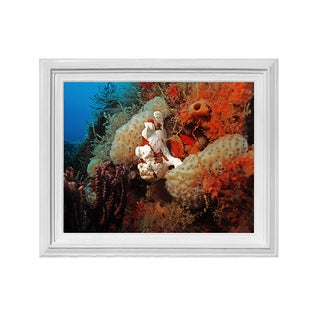 Chris Doherty 'Underwater' 16x20-inch Framed Wall Art