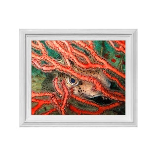 Chris Doherty 'Underwater' Framed Wall Art