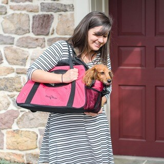Gen7Pets Large Carry-Me Fashion Pet Carrier
