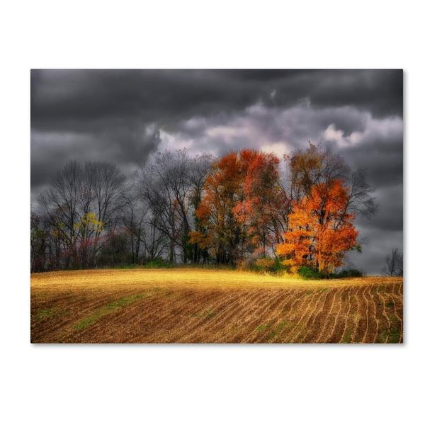 Lois Bryan 'Autumn Field' Canvas Art