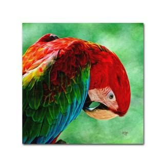Lois Bryan 'Colorful Macaw Square Format' Canvas Art