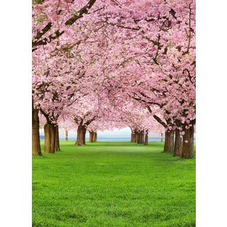 Ideal Decor 'Cherry Trees' Wall Mural