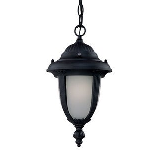Monterey Energy Star Collection Hanging Lantern 1-light Outdoor Matte Black Light Fixture