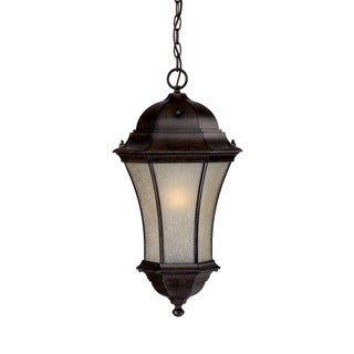 Waverly Energy Star Collection Hanging Lantern 1-light Outdoor Black Coral Light Fixture